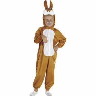 Bruin paashaas verkleedkleding voor kinderen