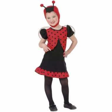 Lieveheersbeestje verkleedkleding meisjes